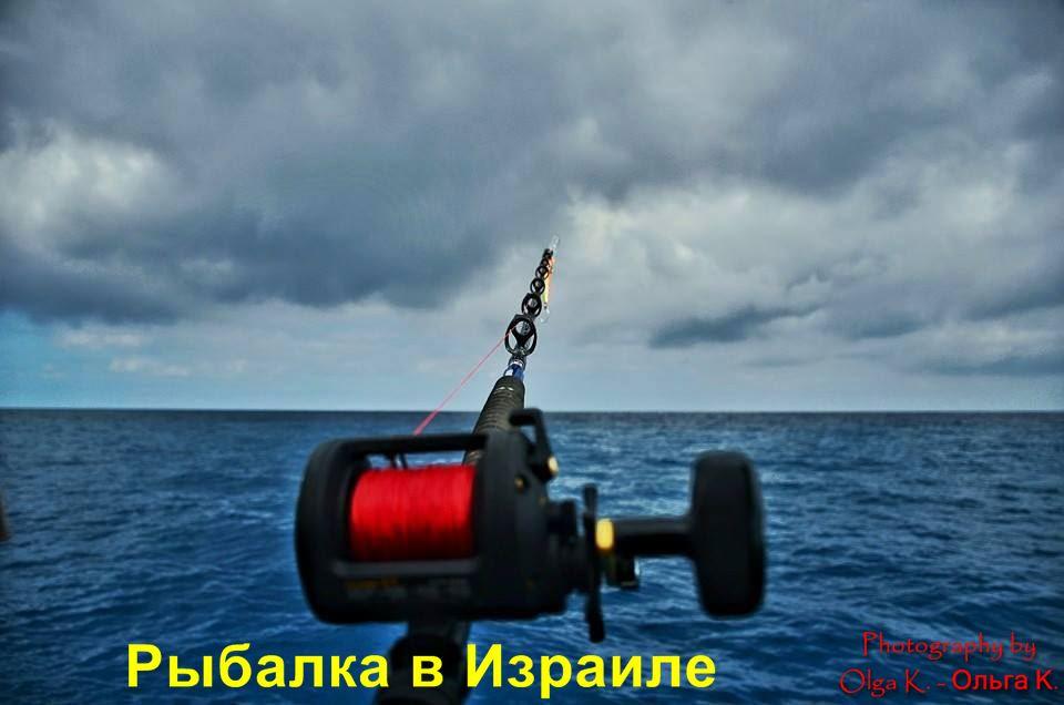 Рыбалка на средиземном море