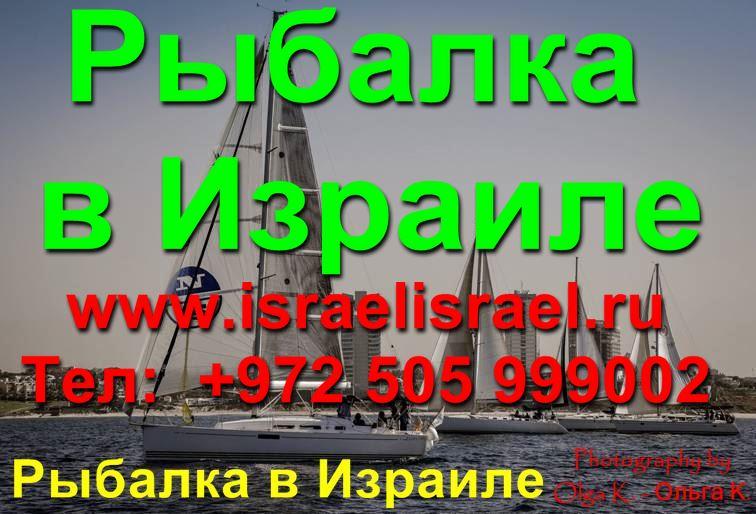Израиль рыбалка с берега