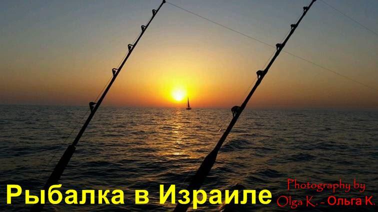 снасти для рыбалки на средиземном море