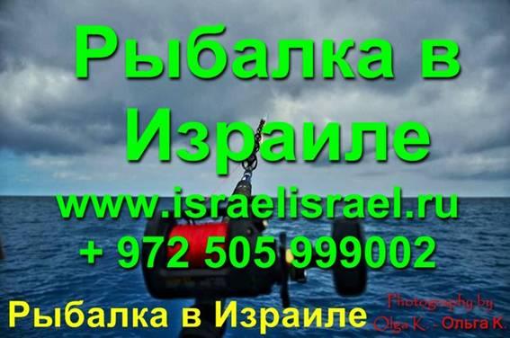 отдых и рыбалка в Израиле