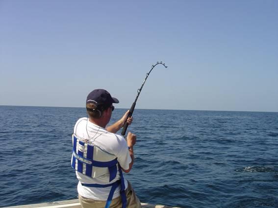 Рыбы в Израиле на средиземном море
